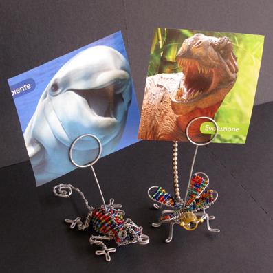 geko e libellula portafoto - perle del deserto